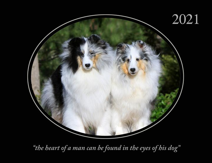 Whelping Calendar 2021 Sheltie/Collie Gifts